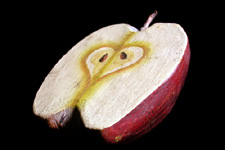 Wooden Fruit: Cut Apple