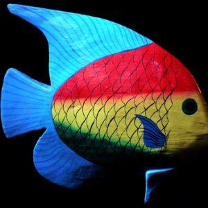 Tropical Fish 5 - Murni's in Bali